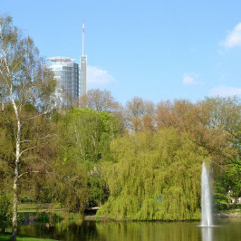Inkasso für Kommunen: Stadt Essen nimmt sich Wiesbaden zum Vorbild